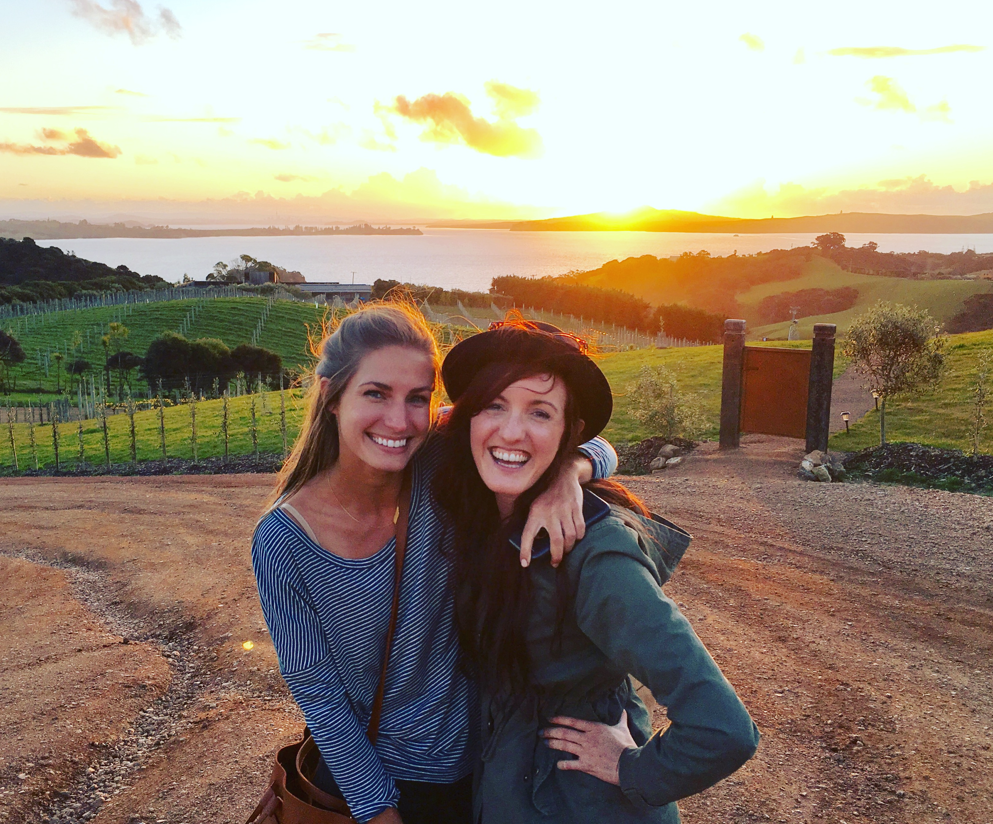 Waiheke Island Vineyards