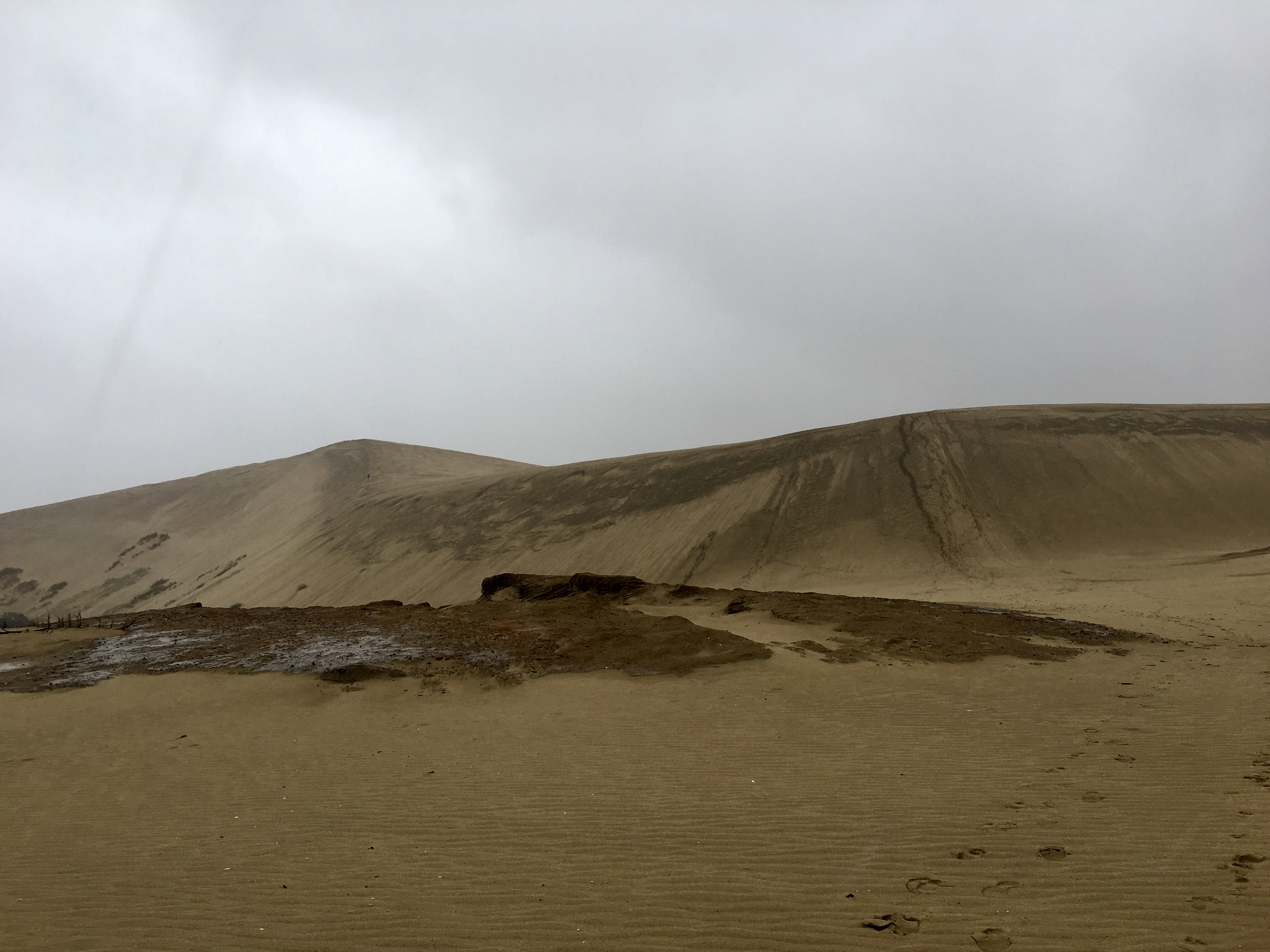 Giant Sand Dunes, Cape Reinga